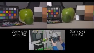 Sony IBIS vs No IBIS Test Using the Sony a7ii and a7S