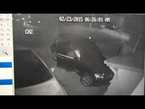 Burglar In An Ugly Jacket Steals Items From Car In Venice