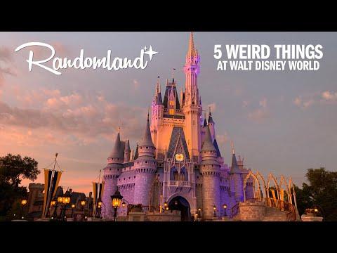 5 Weird Things at Walt Disney World