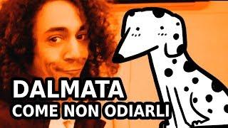 I DALMATA SONO LA FONTE DI OGNI MALE! - RichardHTT