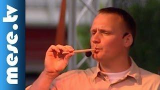 Kolompos együttes: Ekete-pekete-cukota-pé (dal, koncert részlet) | MESE TV