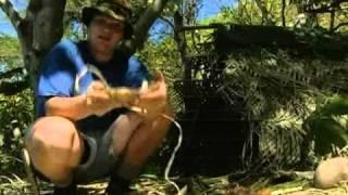 Survival - Kampf ums Überleben - S02E04 - Auf einer einsamen Insel 2/2