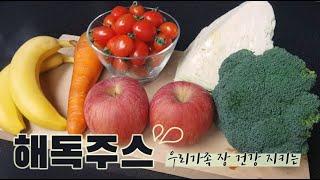 해독주스/유산균과 함께 먹으면 시너지 효과좋은 장건강 …