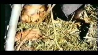 Shango, la Pistola Infallibile (Trailer Inglese)