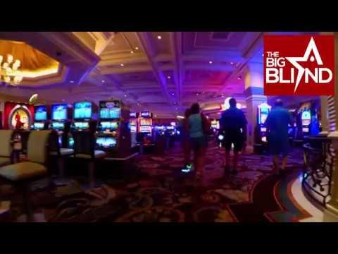 The palace casino jobs