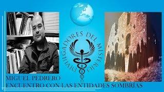 ENCUENTRO CON LAS ENTIDADES SOMBRÍAS por  MIGUEL PEDRERO