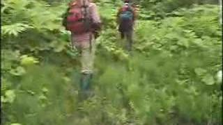 2005年6月11日~12日日に行われたマタギと熊をさがすツアーの様子です。