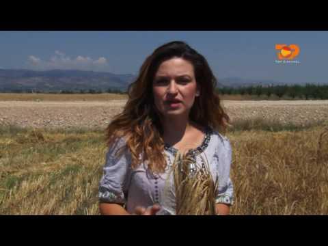Ne Shtepine Tone, 23 Nentor 2016, Pjesa 4 - Top Channel Albania - Entertainment Show