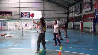 Proyecto Deportivo Especial Despertar - Paletas / Tenis