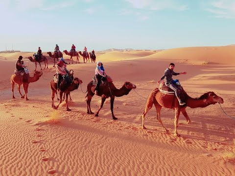 Excursion desert tours from marrakech - private tours to morocco - day trip to morocco