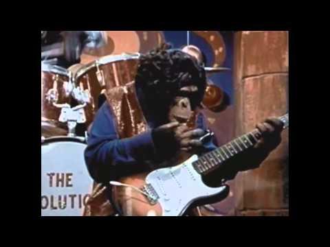 The Monkey Puts It All Together - David Bruce Davis