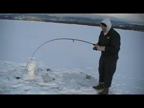Lake Trout Fishing McCall Idaho Feb 11, 2012