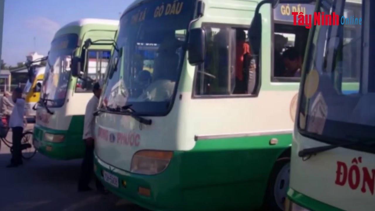 Dừng các hoạt động vận tải hành khách trên địa bàn tỉnh Tây Ninh trong 15 ngà