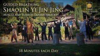 易筋經 · Yi Jin Jing (with Guided Breathing · inkl. Anleitung)