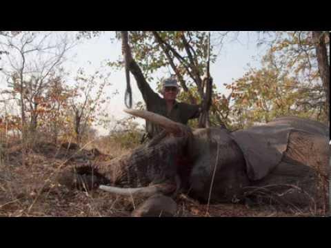 Hunting Elephant in Zimbabwe