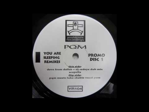 PQM ‎– You Are Sleeping (PQM Meets Luke Chable Vocal Pass) [HD]