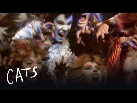 The Unique Challenges of Cats - Behind the Scenes | Cats the Musical