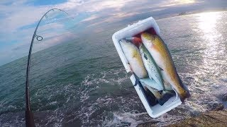 Jetties Fishing Is CHEATING!!! Catching Spanish Mackerel and Redfish