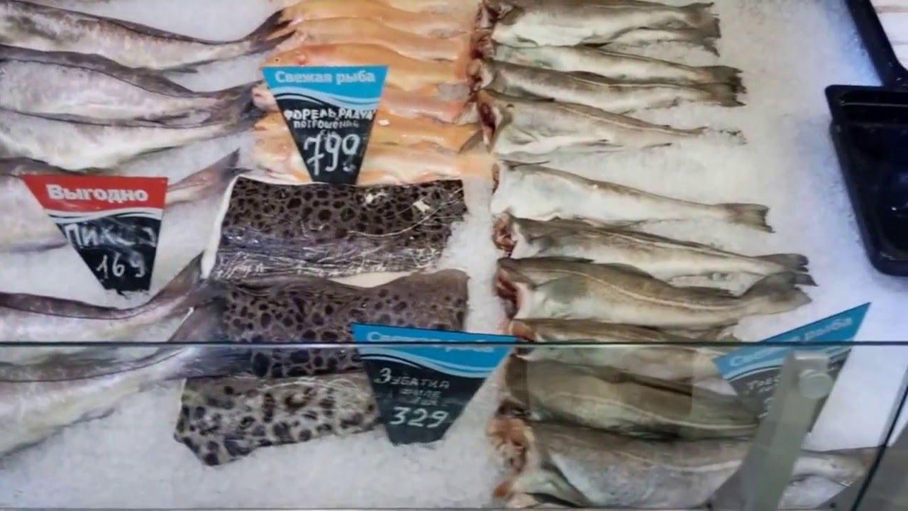 . (опт) свежей и продажу охлаждённой рыбы москва и мо по приемлемым. (кету, кижуч, чавычу), форель, сибас, дорадо, треску, камбалу, пикшу.