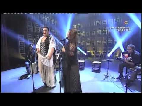 FLAMENCO 1 el sol, la sal, el son, patrimonio, del Alma, y de la, Humanidad, directo 2011