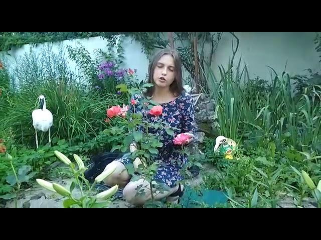 Изображение предпросмотра прочтения – АнастасияКовтун читает произведение «Летний сад» А.А.Ахматовой