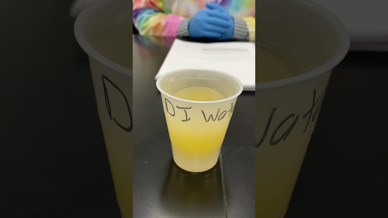 Osmosis Lab Video Experiment 2 Syrup Egg in Water - YouTube