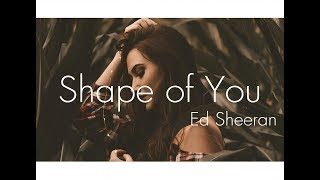 Ed Sheeran - Shape of You (Ilkay Sencan Remix)