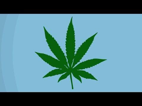 La légalisation de la marijuana: les défis dans le monde du travail