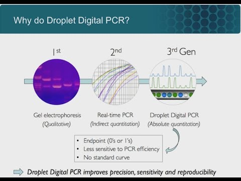 The Power Of Partitioning: The World Of Droplet Digital™ PCR Applications