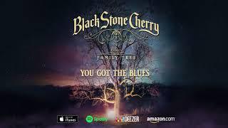 Скачать Black Stone Cherry You Got The Blues Family Tree Official Audio