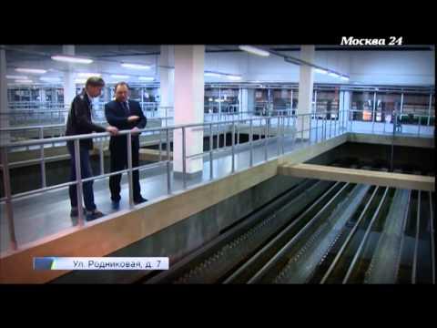 """""""В деталях"""": Как очищают водопроводную воду в Москве"""