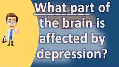 What part of the brain is affected by depression ? | Health FAQ Channel