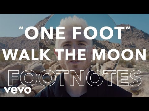 WALK THE MOON -