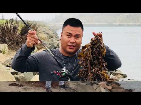 Carlsbad Lagoon Saturday Fishing Vlog:53