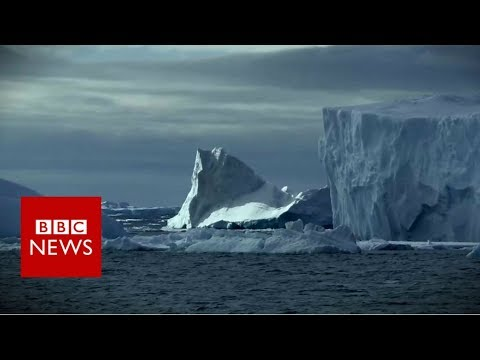 Antarctica's Weddell Sea 'deserves protected status' - BBC News