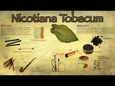 Clearing The Smoke Surrounding The Taboos of Tobacco (2021 Documentary)