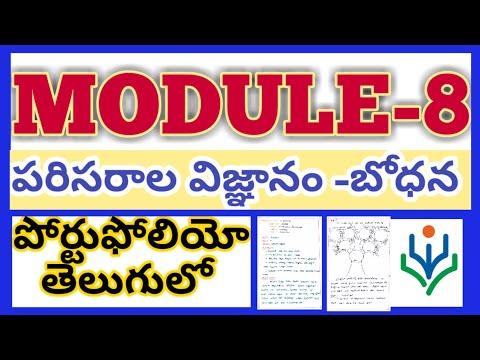Module8 Portfolio model NISHTHA