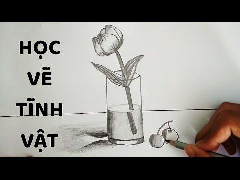 Vẽ Tĩnh Vật Lọ Hoa và Quả bằng bút chì – How to draw Still Life #2   Bao quát những thông tin liên quan đến ảnh lọ hoa và quả đầy đủ nhất