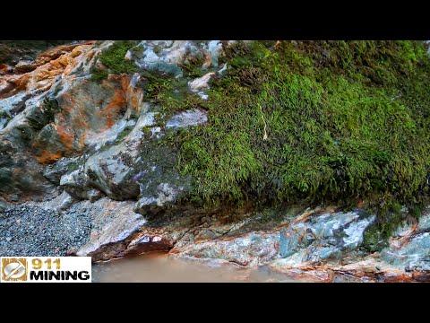 Gold Quartz Veins Running Through Bedrock
