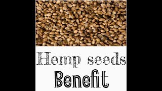 hemp seeds benefits in hindi