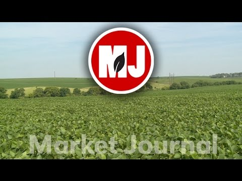 Market Journal - July 8, 2016 (full episode)