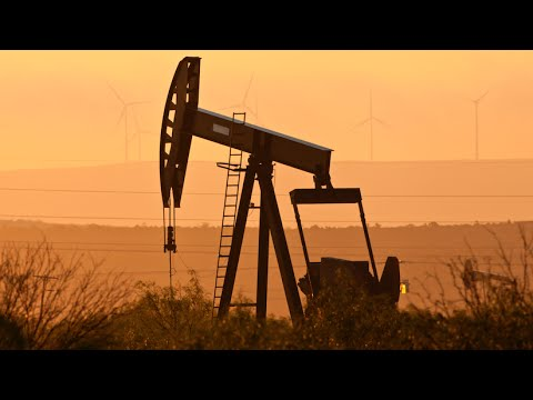 What'd You Miss? Oil's in a Bull Market, Walmart's Crime Problem & More (Full Show - 08/18/16)
