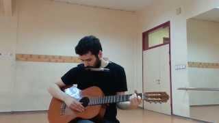 Polyushka polye harmonica guitar cover