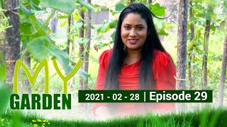 My Garden | Episode 29 | 28 - 02 - 2021 | Siyatha TV