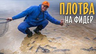 ВЕСЕННЯЯ ПЛОТВА на фидер Рыбалка на Днепре
