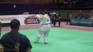 All American Open Kyokushin Karate New York 2013
