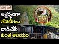 ఆశ్చర్యంగా తేనెటీగలు దాడిచేసే వింత ఆలయం | History Of Sri Nemaligundla Ranganayaka Swamy Temple