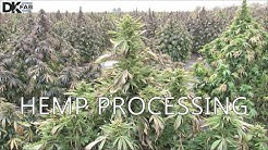 Hemp Processing- Farm to CBD Extraction