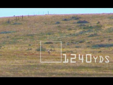 2017 Extreme Long Range Kill Shots