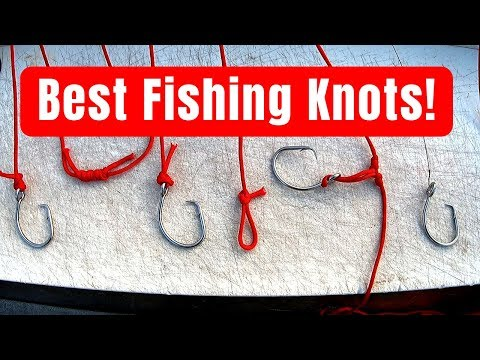 7 Fishing Knots Every Good Fisherman Must Know! (By Captain Cody)